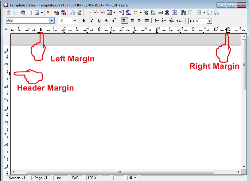 Template editor page margins