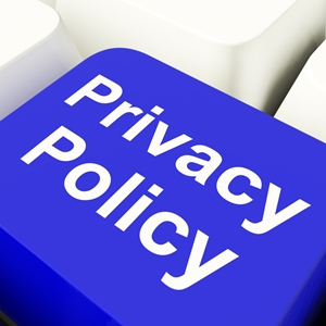 Privacy statement icon
